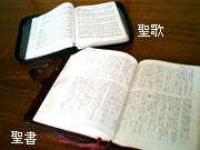 礼拝では、新改訳聖書を使っています